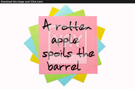 proverb a rotten apple spoils the barrel written on bunch of s get this and 6 million other stock images