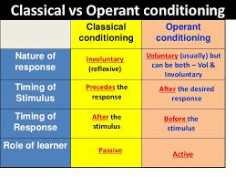 classical vs operant conditioning uldissprogis classical vs operant conditioning 2 728