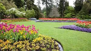 best backyard landscaping ideas of 2021