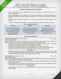 Cio Sample Resume Unique Executive Resume Samples Steadfast48
