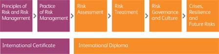 international diploma in risk management diploma module info