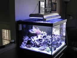 diy led lighting. Wonderful Lighting Led Lighting For Diy Programmable Led Aquarium Light And Best Diy Reef  Aquarium Kits With