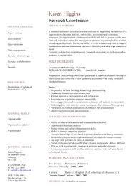 Curriculum Vitae Example Best Academic Curriculum Vitae Bravebtr