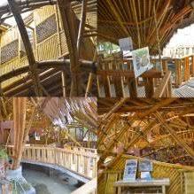 pdf sensible architecture bamboo