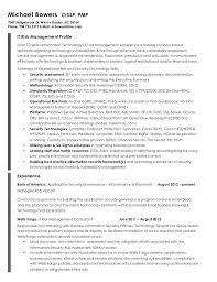 Risk Management Resume Samples Sample Professional Letter Formats