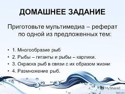 Презентация на тему Внутреннее строение рыбы на примере  8 ДОМАШНЕЕ ЗАДАНИЕ Приготовьте мультимедиа реферат