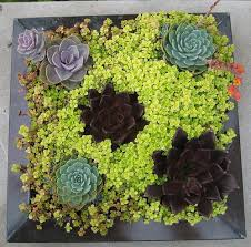 Small Picture A Single Picture Of Flowers Can Make Your Container Garden Design
