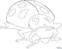 Lieveheersbeestje Kleurplaten Kidre