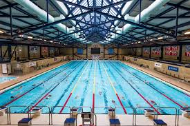 FileOlympic size 50m Swimming Pooljpg Wikimedia Commons