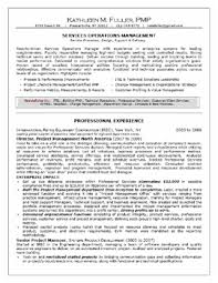 professional accomplishments resume sample resumes professional skills - Professional  Accomplishments Resume Examples
