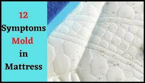 the 12 mold in mattress symptoms don t