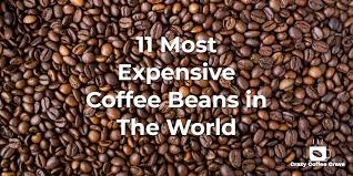 The beans are smaller, but because they are separated from kona coffee before roasting, they are given their own roasting techniques to bring out their own unique flavors. 11 Most Expensive Coffee Beans In The World Crazy Coffee Crave