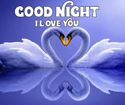 best white swan good night i love you