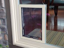 glass dog door