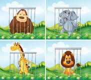 zoo animals in cages clipart. Modren Zoo Wild Animals In Cage Illustration Vector Illustration Throughout Zoo Animals In Cages Clipart O