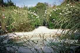 le mas de la brune. Sensuality And Alchemy In Provence .. Garden Of The Alchemist Le Mas De La Brune