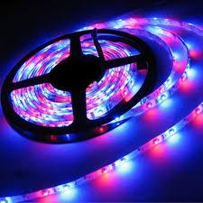 Adhesive Light Strips Econoled Led Flexible Strip Lightsstrip Lights 16 4ft