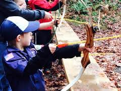 Image result for boy scouts having fun at cub scout day camp images