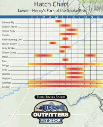 Henrys Fork Hatch Chart For The Lower River