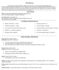 fake resume example