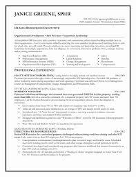 Senior Management Resume Templates Reference Functional Format