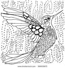 Small Picture Conjunto de Adult coloring pages birds flowers mandala