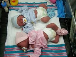 Pin by Lola Estelle Wolf on Dolls and other toys | Reborn baby dolls twins,  Silicone baby dolls, Real baby dolls