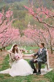 cherry blossom wedding ideas elizabeth anne designs the wedding
