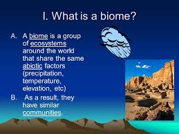 What Are Biomes What Are Biomes Magdalene Project Org