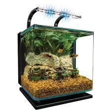 Marineland Aquatic Plant Led Lighting System Review Marineland Contour Glass Aquarium Kit With Rail Light
