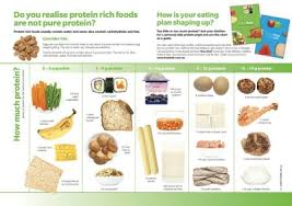 Food And Protein Chart Protein Chart