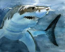 great white shark painting. Perfect Great Great White Shark  Rachel Parker Watercolor More To Painting I