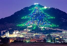 The world's largest Christmas tree!