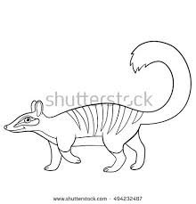 Small Picture Vector Isolated Coloring Book Tiger Kids Stock Vector 573605053