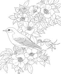 Adult Coloring Pages Flowers To Download And Print For Free Adult