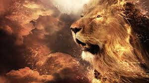 roaring lion wallpaper hd 1080p. Plain Wallpaper High Resolution Lion 1080p Wallpaper ID255158 For PC On Roaring Wallpaper Hd