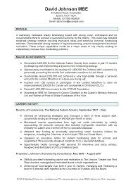Personal Statement For A Cv Personal Statement For Resume Sample Personal Summary Resume
