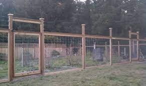 deer fence diy garden fence