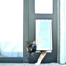 diy cat door for window pet door diy cat door for sliding window