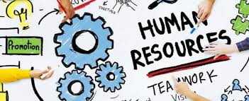 Human Resources Consultancy Tips