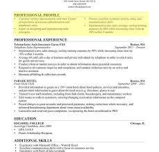 Resume Templates Usa Skillsusa Template Microsoft Word Job S Resume Usa  Template Template Medium Government Job Blue Sky Resumes