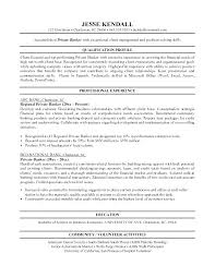 Samples Of Curriculum Vitae Gorgeous Bank Resume Template Curriculum Vitae Format For Example Investment