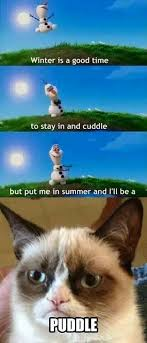 grumpy cat quotes frozen. Simple Cat For More Grumpy Cat Quotes Visit Wwwbestfunnyjokes4ucom With Grumpy Cat Quotes Frozen Pinterest