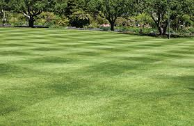 Mowing Patterns Enchanting Mowing Patterns Make Perfect Turf