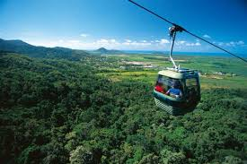 Image result for images of the Skyrail transportation within the daintree rainforest