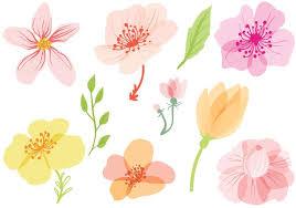 spring flowers vectors free