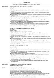 Financial Resume Financial Management Resume Samples Velvet Jobs 22