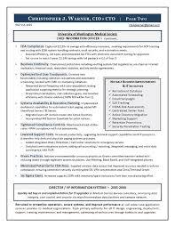 Sample Cio Resume From Executive Resume Writer It Resume Writer