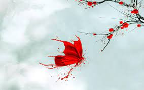 Red Butterfly 3D Wallpapers - Top Free ...