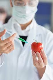Food Safety Specialist Profession Food Safety Specialist